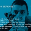 5. 9. 2018 - Ceschi (USA), Serengeti (USA), Andy The Doorbum (USA) - Brno - Kabinet Múz