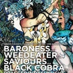 7. 7. 2010 - Baroness (USA), Black Cobra (USA), Dragged into Sunlight (UK), Saviours (USA), Weedeater (USA) - Praha - Matrix